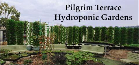 Pilgrim Terrace